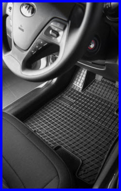 Frogum Custom Fit Rubber Car Floor Mats