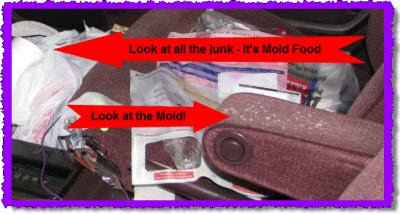 Mold or mould in car truck van or suv and trash for mold food