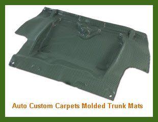 Auto Custom Carpets Molded Trunk Mats